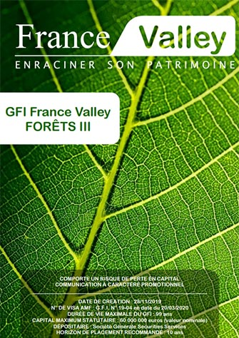 GFI France Valley For�ts III